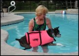 Support your dog's body<br> and lower him gently into the water<br>... one step at a time!